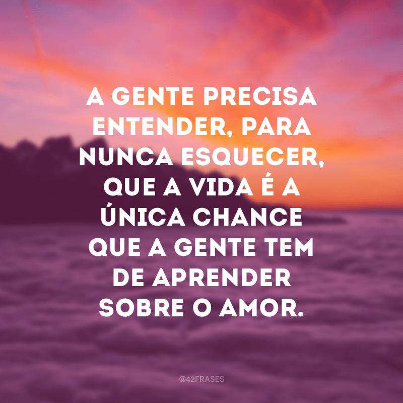 A gente precisa entender, para nunca esquecer, que a vida é a única chance que a gente tem de aprender sobre o amor.