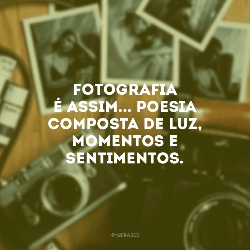 Fotografia é assim... Poesia composta de luz, momentos e sentimentos.