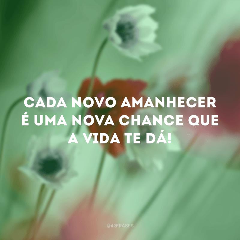 Cada novo amanhecer é uma nova chance que a vida te dá!