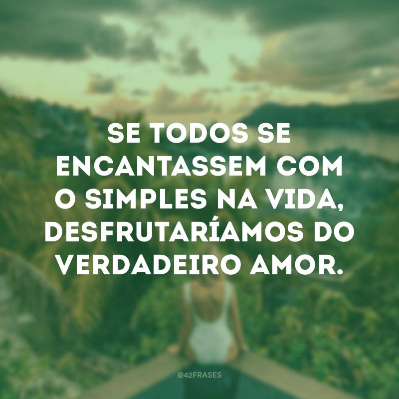 Se todos se encantassem com o simples na vida, desfrutaríamos do verdadeiro amor.