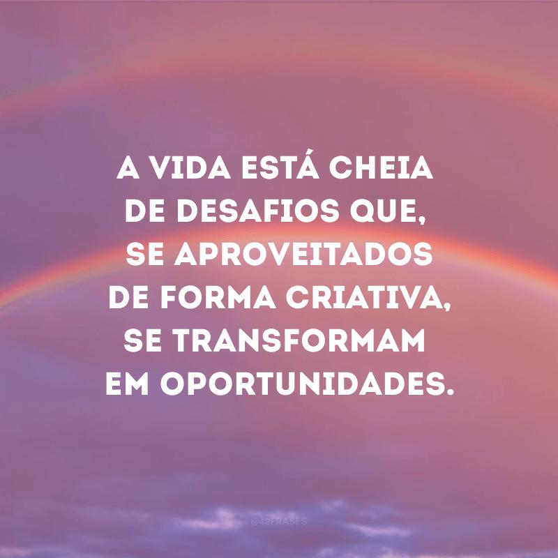 A vida está cheia de desafios que, se aproveitados de forma criativa, se transformam em oportunidades.