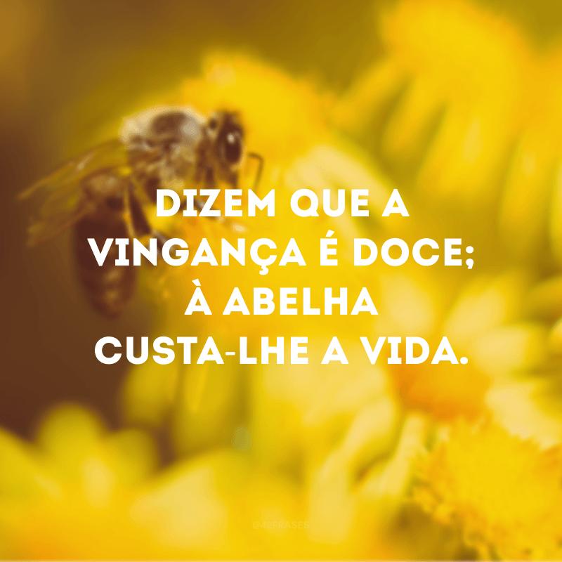 Dizem que a vingança é doce; à abelha custa-lhe a vida.