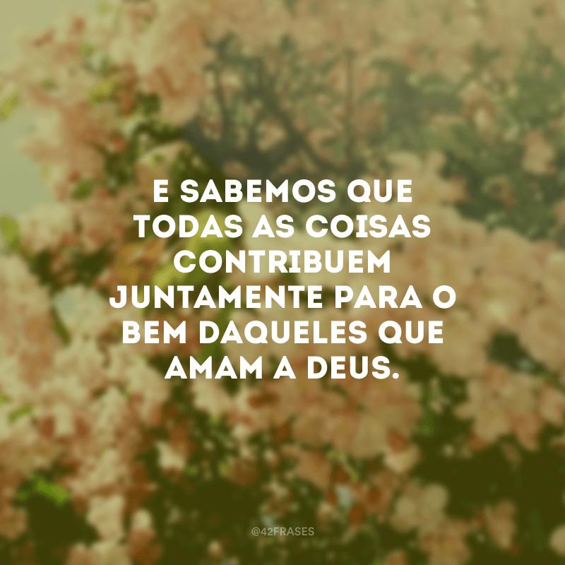 E sabemos que todas as coisas contribuem juntamente para o bem daqueles que amam a Deus.