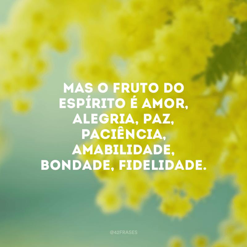 Mas o fruto do Espírito é amor, alegria, paz, paciência, amabilidade, bondade, fidelidade.