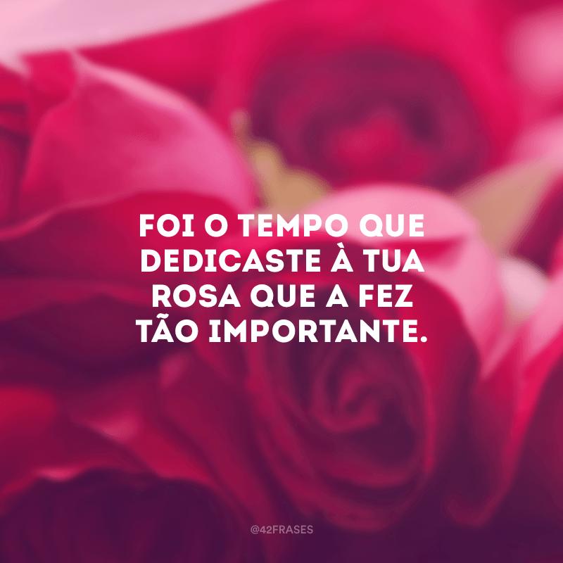 Foi o tempo que dedicaste à tua rosa que a fez tão importante.