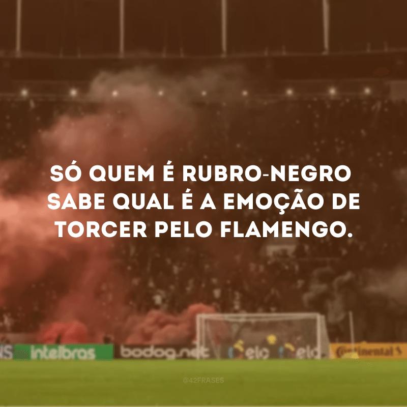 Só quem é rubro-negro sabe qual é a emoção de torcer pelo Flamengo.