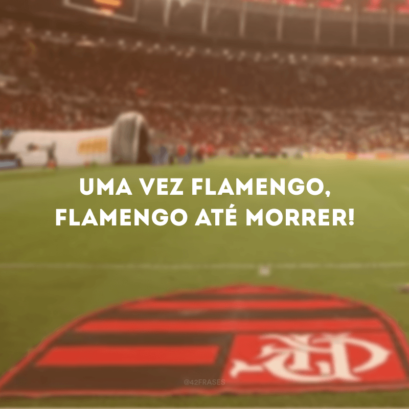 Uma vez Flamengo, Flamengo até morrer!