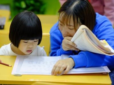 50 frases para professores cheias de respeito e admiração