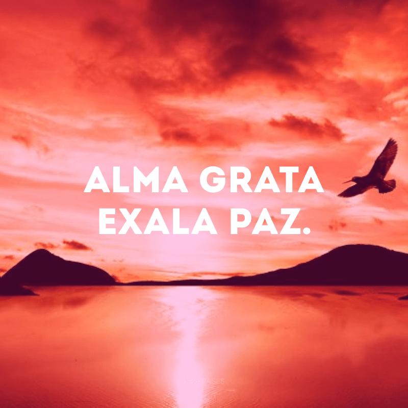 Alma grata exala paz.