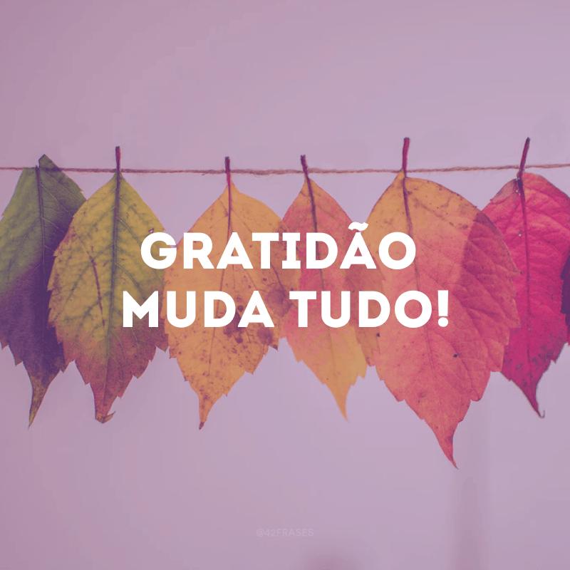 Gratidão muda tudo!