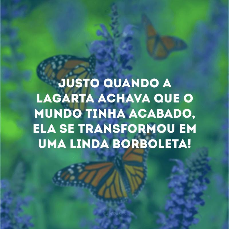 Justo quando a lagarta achava que o mundo tinha acabado, ela se transformou em uma linda borboleta!