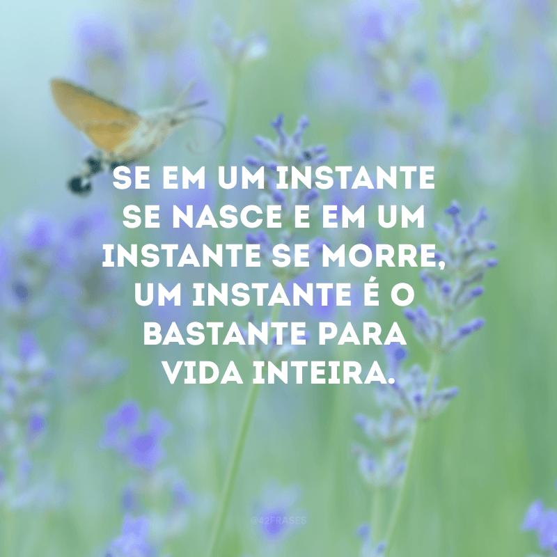 Se em um instante se nasce e um instante se morre, um instante é o bastante para vida inteira.