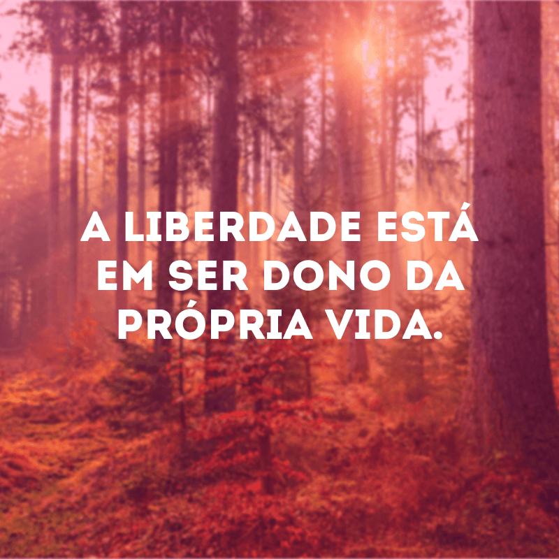 A liberdade está em ser dono da própria vida.