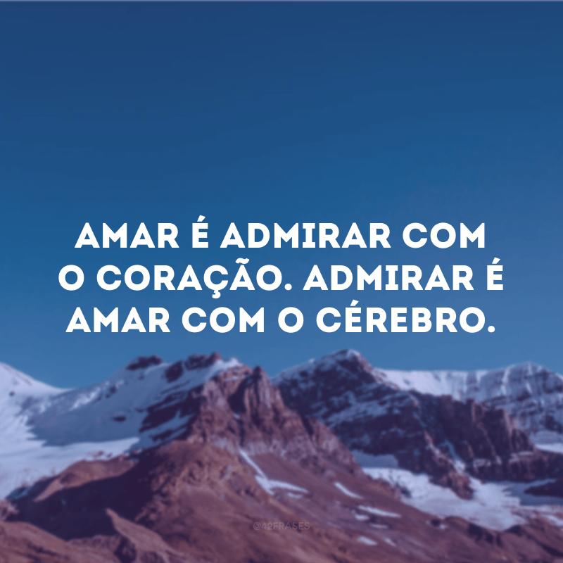 Amar é admirar com o coração. Admirar é amar com o cérebro.