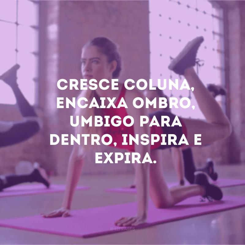 50 Frases De Pilates Para Fortalecer O Corpo E A Mente