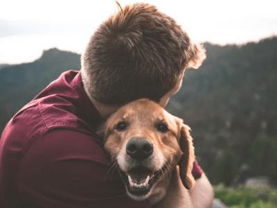 40 frases de lealdade para quem valoriza essa qualidade