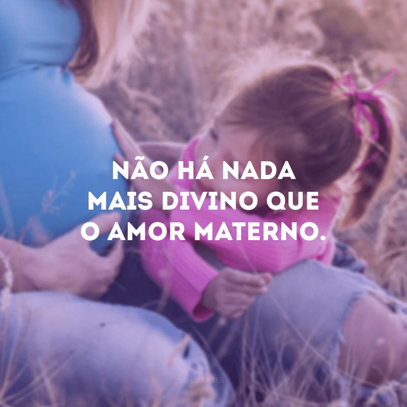Não há nada mais divino que o amor materno.
