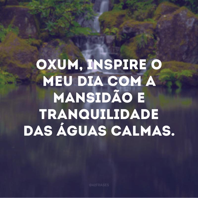 Oxum, inspire o meu dia com a mansidão e tranquilidade das águas calmas.