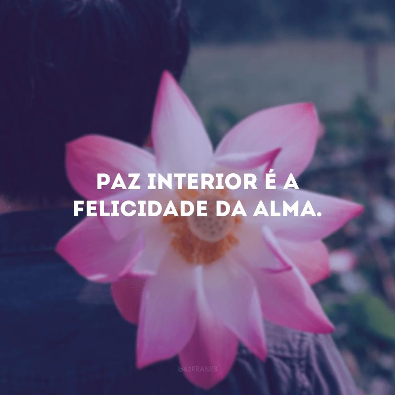 Paz interior é a felicidade da alma.