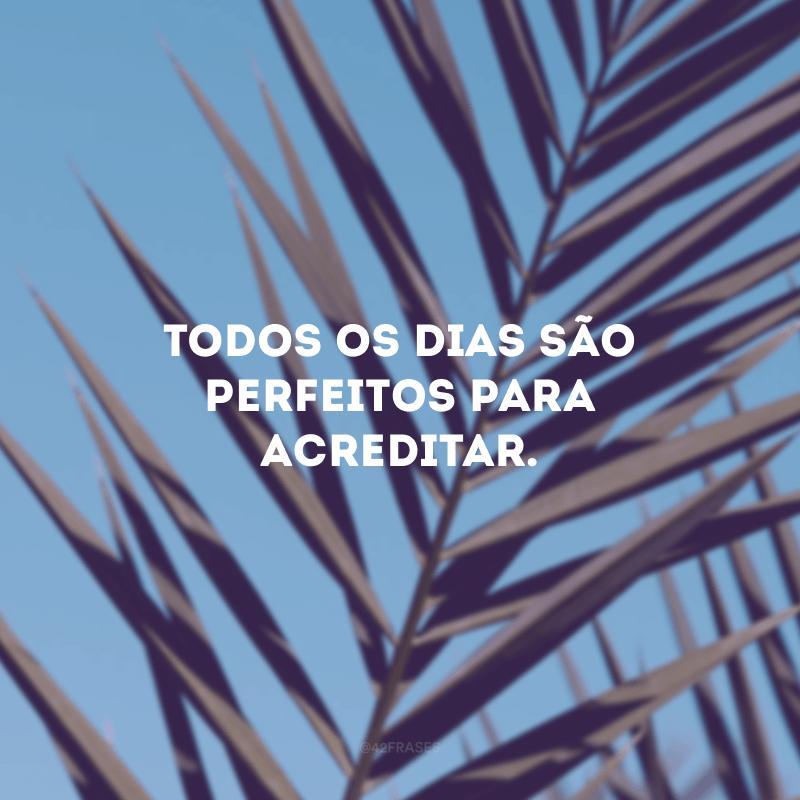 Todos os dias são perfeitos para acreditar.