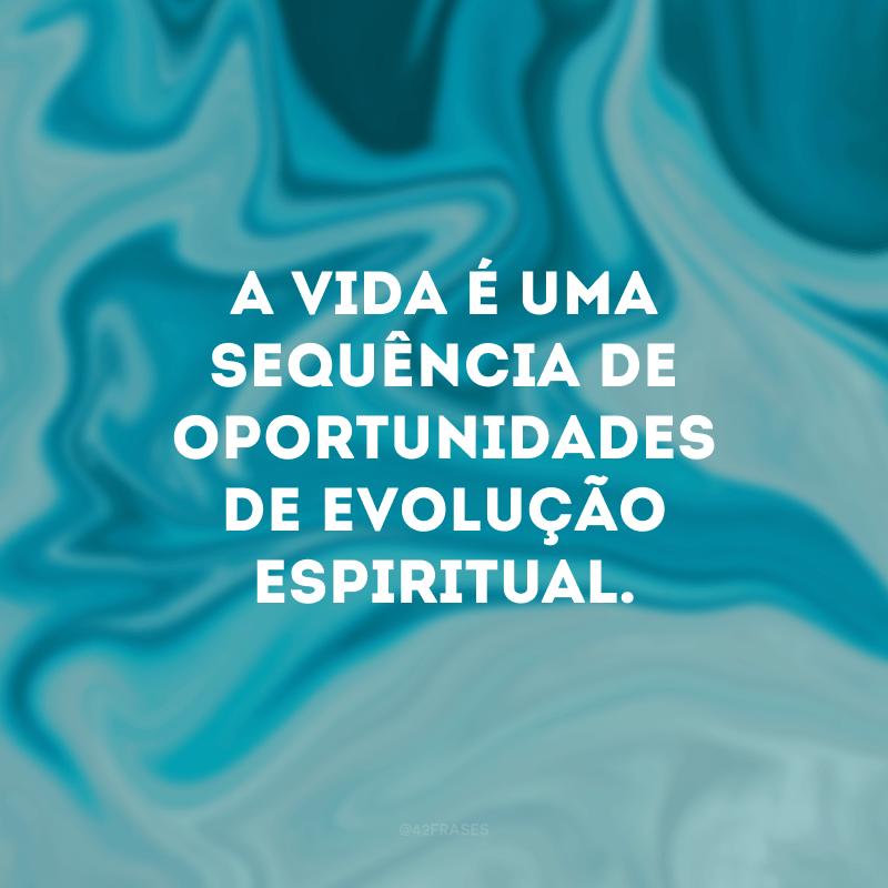 A vida é uma sequência de oportunidades de evolução espiritual.