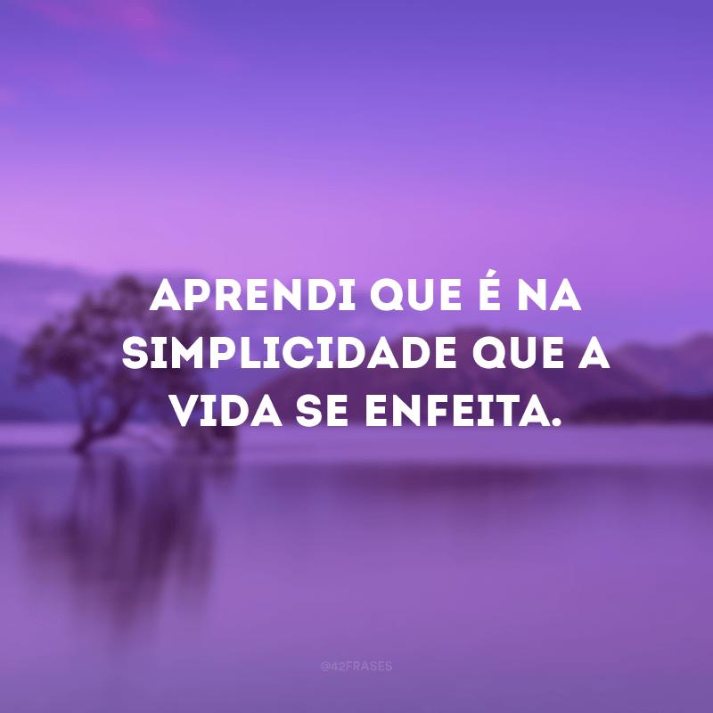 Aprendi que é na simplicidade que a vida se enfeita.