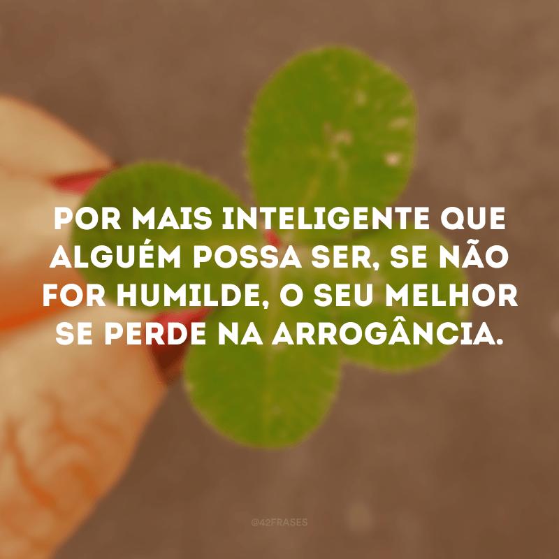 Por mais inteligente que alguém possa ser, se não for humilde, o seu melhor se perde na arrogância.