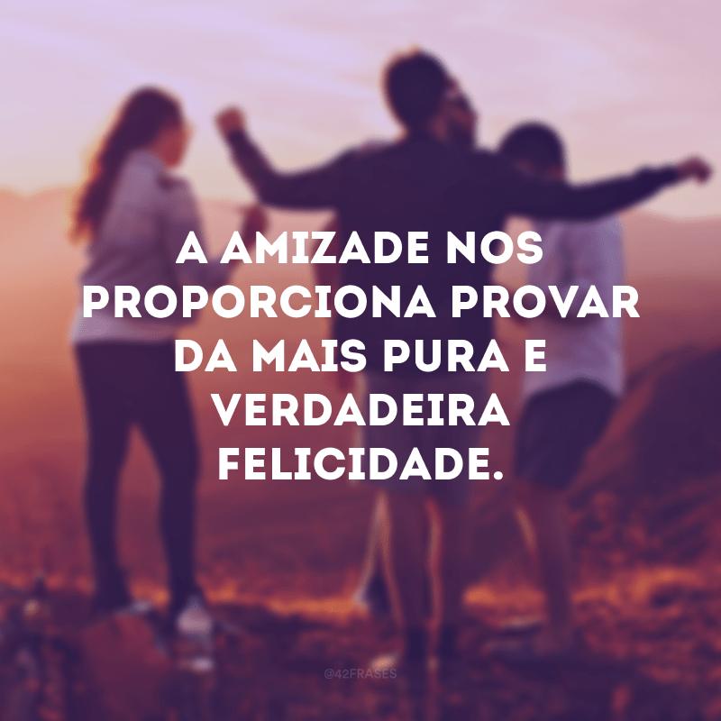A amizade nos proporciona provar da mais pura e verdadeira felicidade.