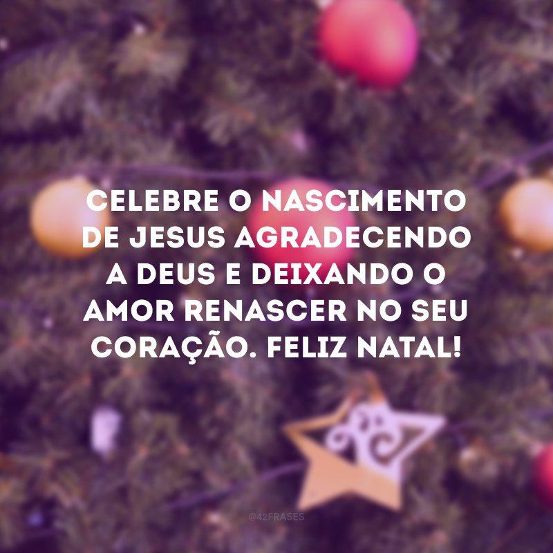 Celebre o nascimento de Jesus agradecendo a Deus e deixando o amor renascer no seu coração. Feliz Natal!