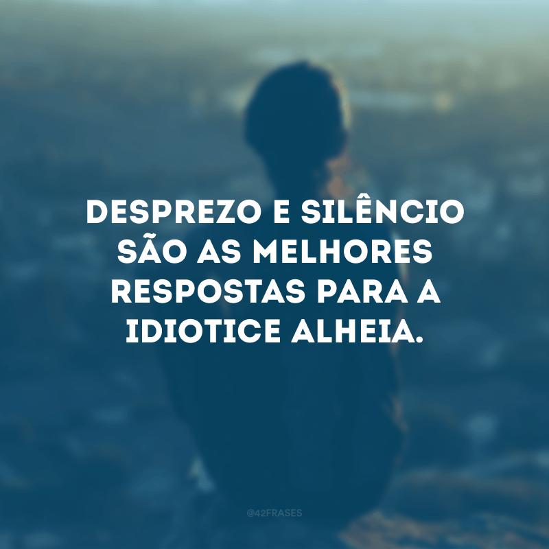 Desprezo e silêncio são as melhores respostas para a idiotice alheia.