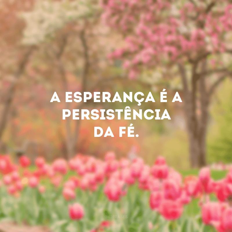 A esperança é a persistência da fé.