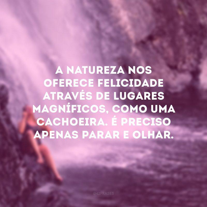 A natureza nos oferece felicidade através de lugares magníficos, como uma cachoeira. É preciso apenas parar e olhar.