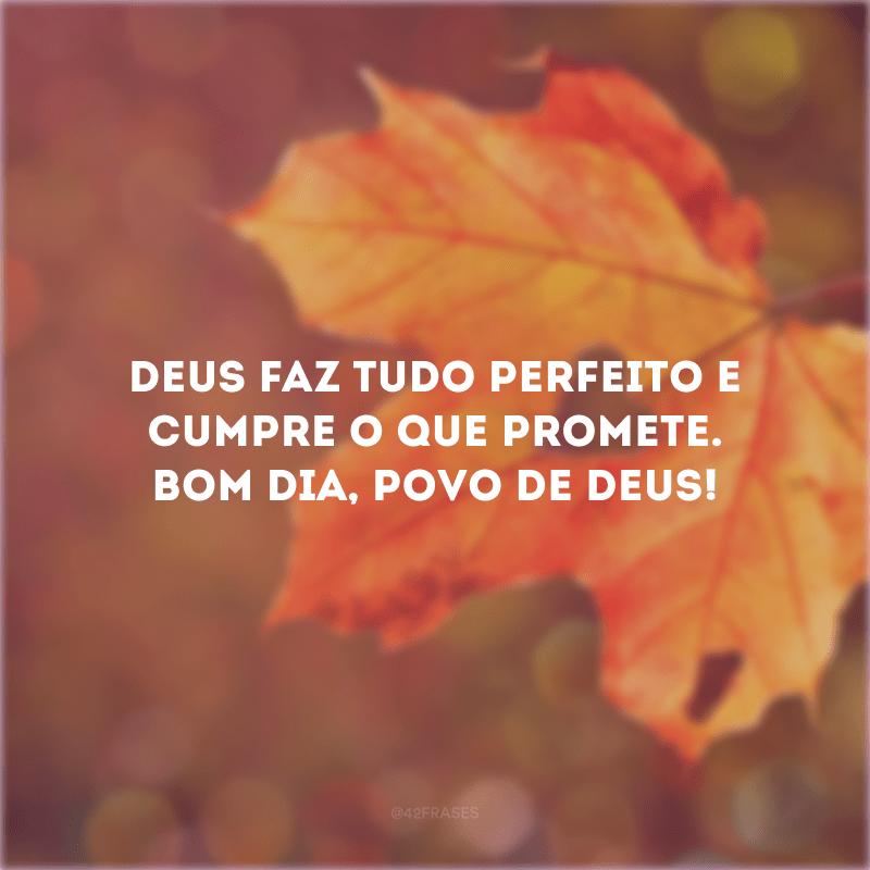 Deus faz tudo perfeito e cumpre o que promete. Bom dia, povo de Deus!