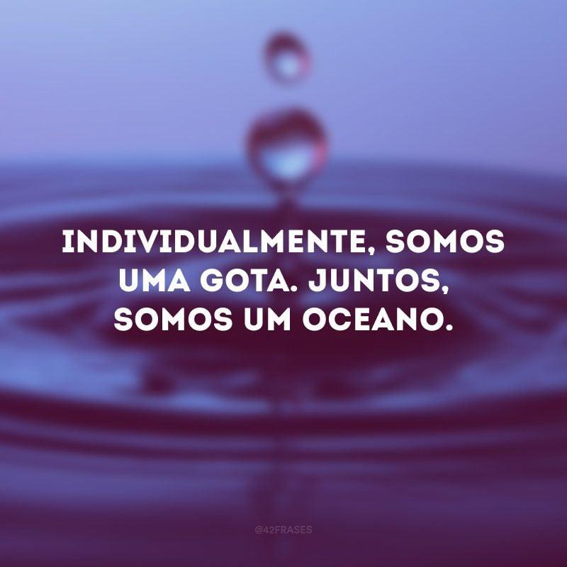 Individualmente, somos uma gota. Juntos, somos um oceano.