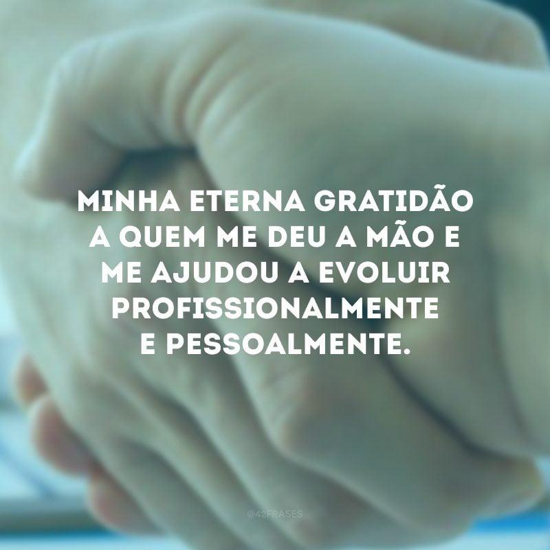 Minha eterna gratidão a quem me deu a mão e me ajudou a evoluir profissionalmente e pessoalmente.