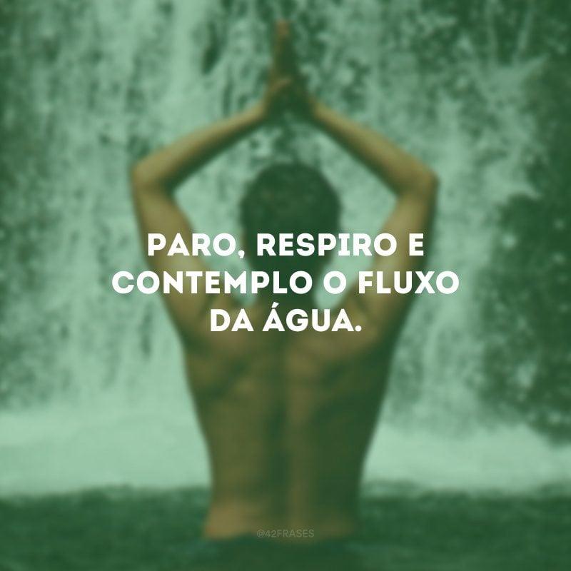Paro, respiro e contemplo o fluxo da água.