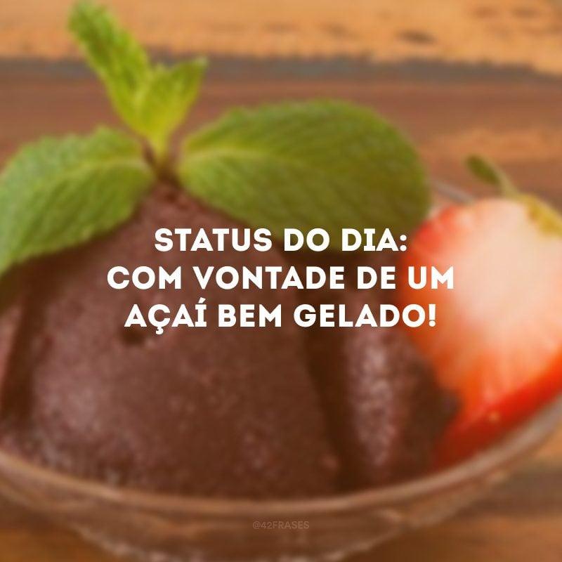 Status do dia: com vontade de um açaí bem gelado!