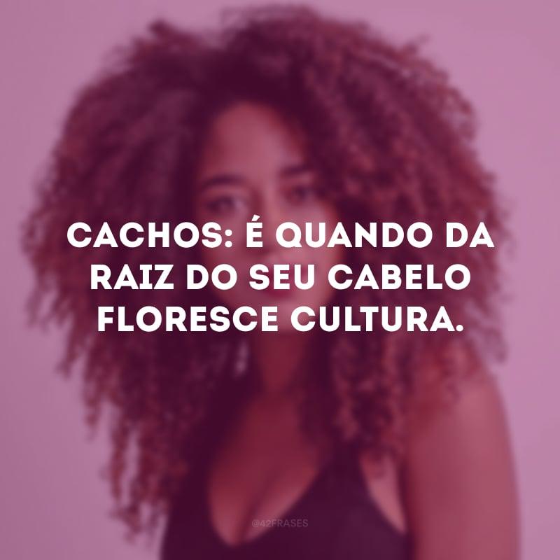 Cachos: é quando da raiz do seu cabelo floresce cultura.