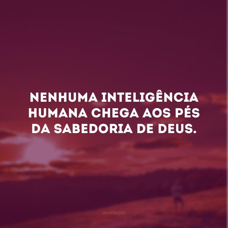 Nenhuma inteligência humana chega aos pés da sabedoria de Deus.