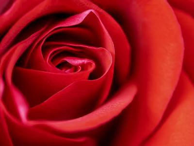 50 frases curtas para o Dia dos Namorados repletas de amor e paixão
