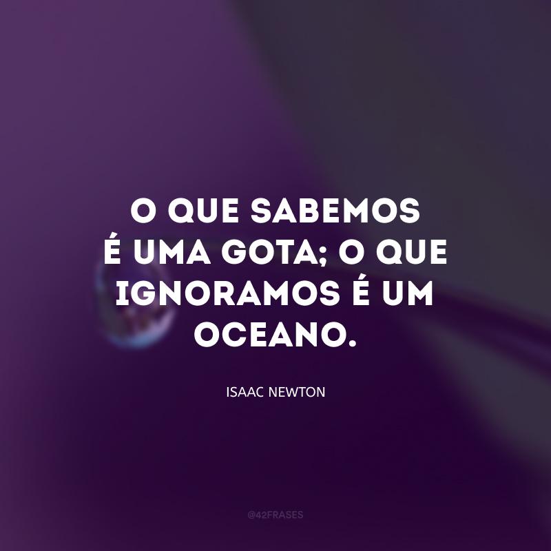 O que sabemos é uma gota; o que ignoramos é um oceano.