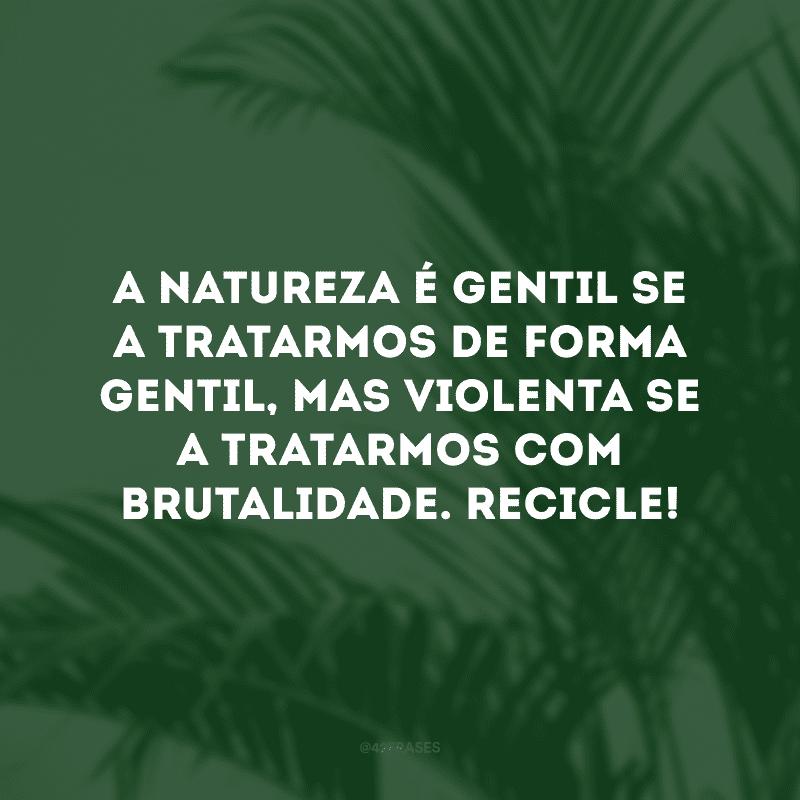 A natureza é gentil se a tratarmos de forma gentil, mas violenta se a tratarmos com brutalidade. Recicle!