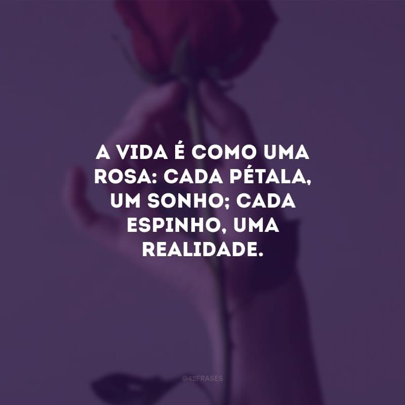 A vida é como uma rosa: cada pétala, um sonho; cada espinho, uma realidade.
