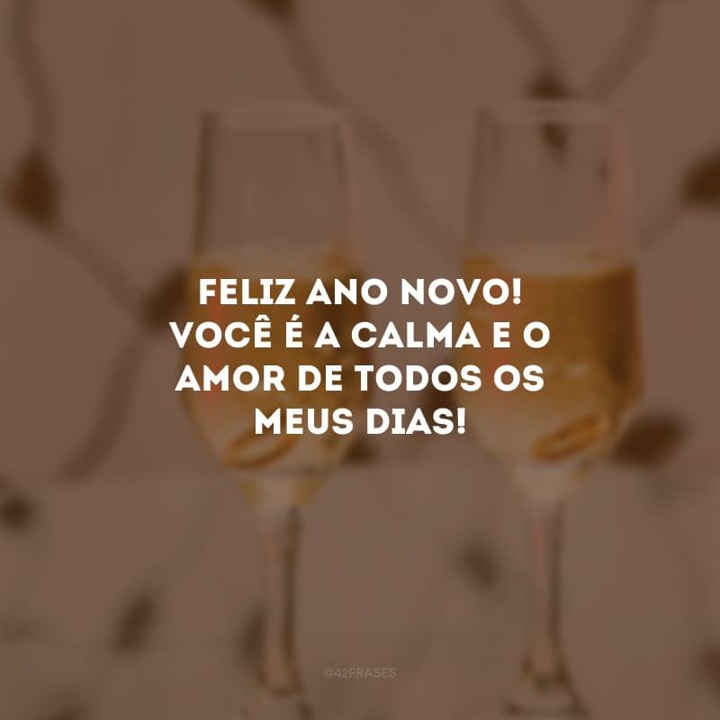 Feliz ano novo! Você é a calma e o amor de todos os meus dias!