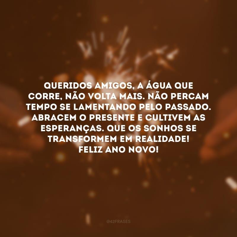 Queridos amigos, a água que corre, não volta mais. Não percam tempo se lamentando pelo passado. Abracem o presente e cultivem as esperanças. Que os sonhos se transformem em realidade! Feliz Ano Novo!