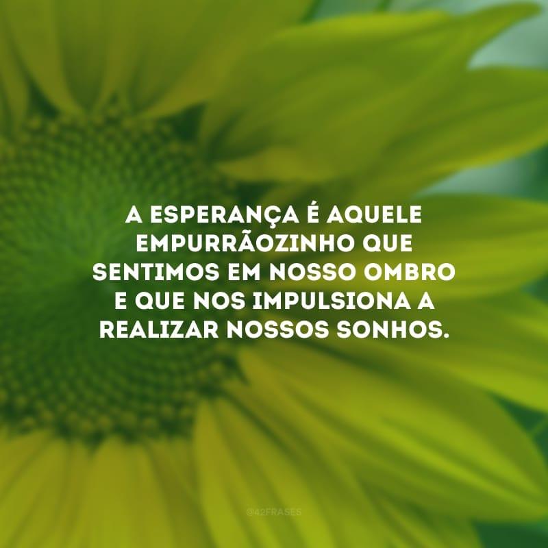 A esperança é aquele empurrãozinho que sentimos em nosso ombro e que nos impulsiona a realizar nossos sonhos.