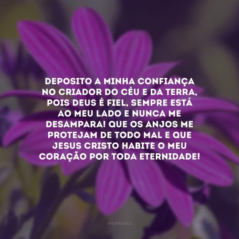 Deposito a minha confiança no Criador do Céu e da Terra, pois Deus é fiel, sempre está ao meu lado e nunca me desampara! Que os anjos me protejam de todo mal e que Jesus Cristo habite o meu coração por toda Eternidade!