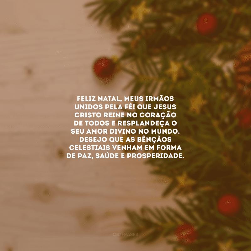 Feliz Natal, meus irmãos unidos pela fé! Que Jesus Cristo reine no coração de todos e resplandeça o seu amor divino no mundo. Desejo que as bênçãos celestiais venham em forma de paz, saúde e prosperidade.
