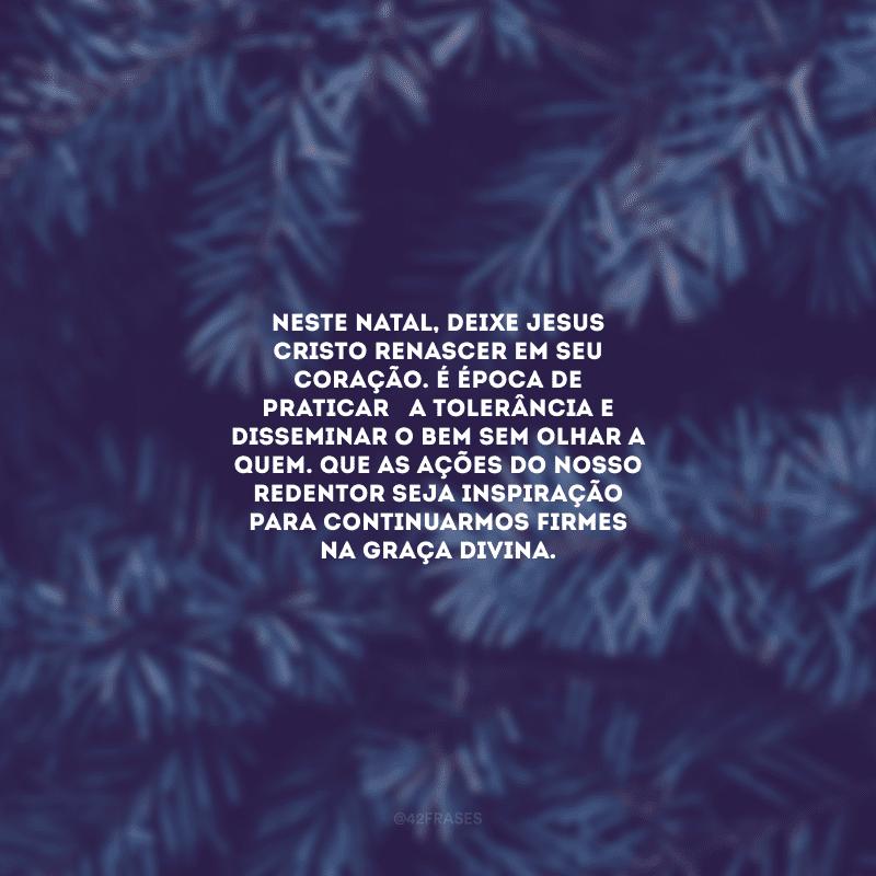 Neste Natal, deixe Jesus Cristo renascer em seu coração. É época de praticar a tolerância e disseminar o bem sem olhar a quem. Que as ações do nosso Redentor seja inspiração para continuarmos firmes na graça divina.