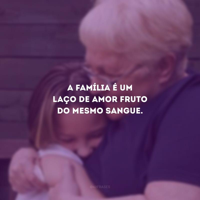 A família é um laço de amor fruto do mesmo sangue.